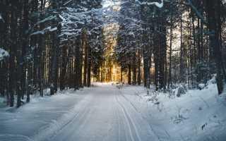Отдых в белоруссии зимой отзывы