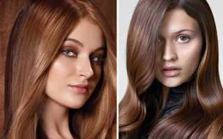 Краска для волос цвет молочный шоколад фото