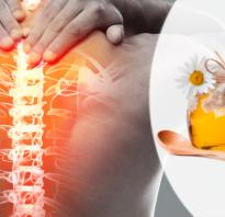 Массаж с медом на спине шлепками