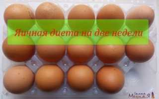 Диета 2 яйца